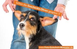 Foto-Gutschein-Muenster.de