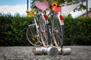 Hochzeits Fotograf Münster Tour-Files